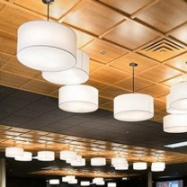 Entrepreneurship: Wood Trac, an affordable, drop-ceiling system developed and marketed by Sauder Woodworking, a family-owned business in Ashland, Ohio