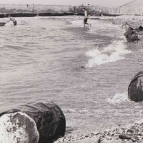 Flotsam despoiling the beach at Gordon Park